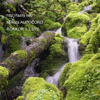 autocord004.png